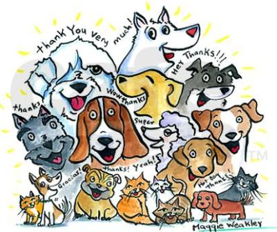 thank_you_dogs_cats_note_cards_pk_of_10.jpg